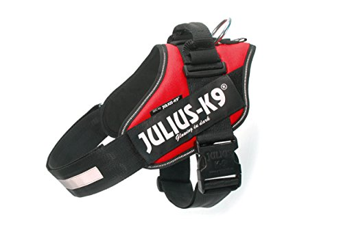 Julius-K9, 16IDC-R-2, IDC-Powergeschirr, Hundegeschirr, Größe: 2, rot