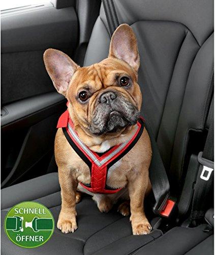 Kleinmetall Allsafe Comfort Hundesicherheitsgurt mit Schnell-Öffner-Verschluss (S)